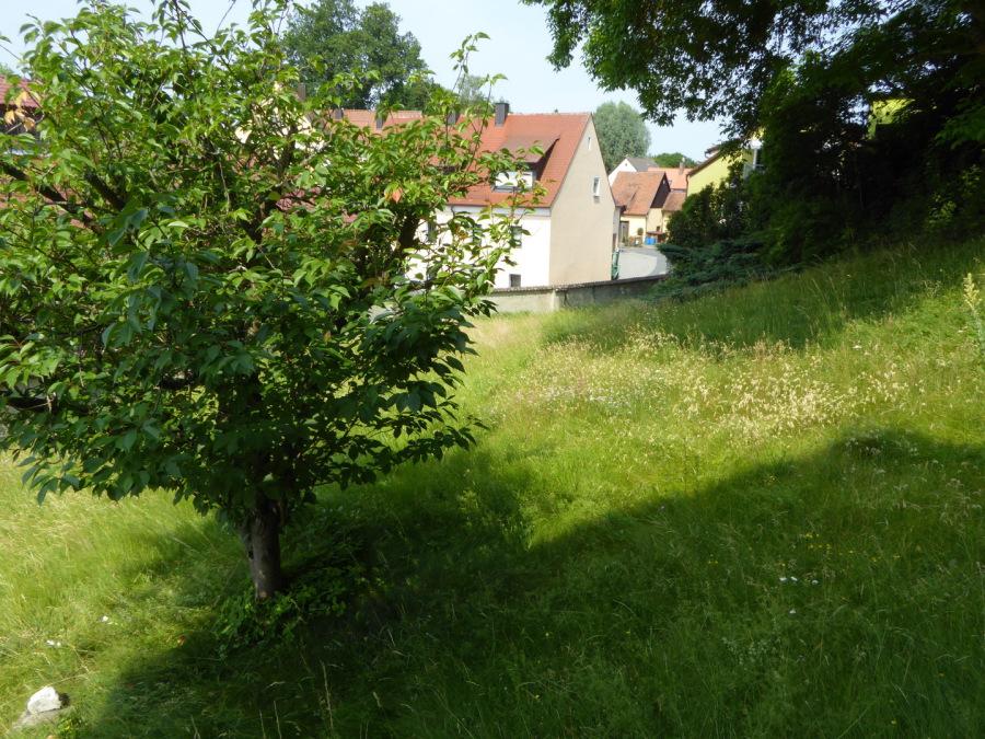 Grundstück Amberg - Sulzbach
